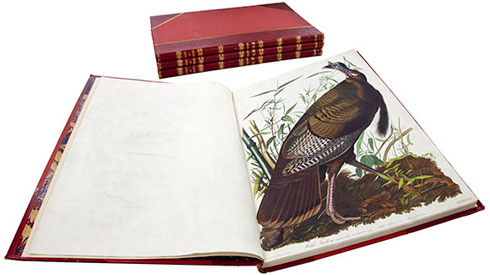 Bound copy of The Birds of America in the Natural History Museum