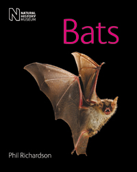 Cover of Bats, Phil Richardson