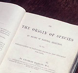 Title Page of 'On The Origin of Species by means of natural selection' by Charles Darwin, 1859