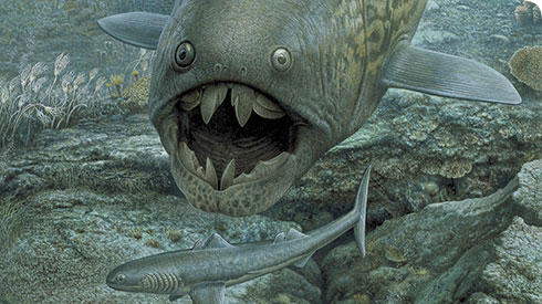 Dunkleosteus, a giant armoured fish from the Devonian Period