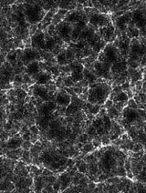 The filament-like large scale structure of galaxies in the universe.
