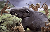 Did Homo heidelbergensis actively hunt large animals such as this elephant?