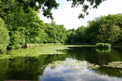 Keston ponds © I and J Palmer