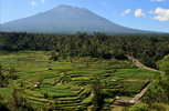 Rice terraces and Mt. Agung
