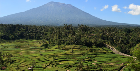 Rice terraces near Mt. Agung, Bali, Indonesia