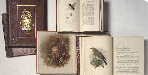 Books from the Natural History Museum's collection
