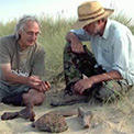 Fossil collector Neil Bowman shows one of his finds to Museum archaeologist Simon Parfitt