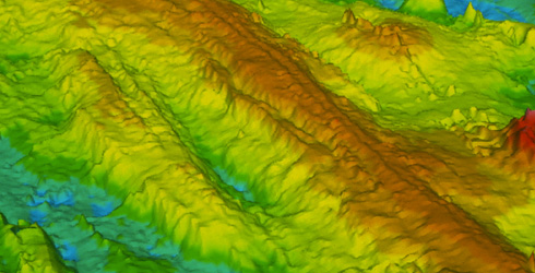 Sonar-generated image of the East Pacific Rise, a mid-ocean ridge on the floor of the Pacific Ocean