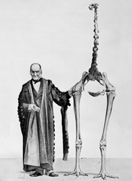 Richard Owen holding the first moa bone fragment and standing next to a complete moa skeleton