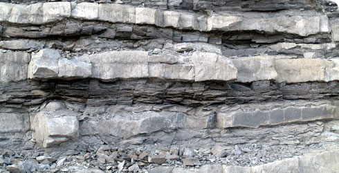 Layers of shale and limestone formed in the Lower Jurassic period at Lyme Regis.