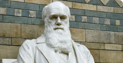 A statue of Charles Darwin at the Natural History Museum