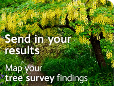 Send in your results - map your survey findings