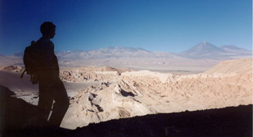 Photograph of Museum scientist looking out over volcanic landscape