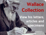 Wallace Collection - view his letters, articles and specimens