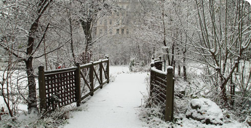 The Museum's wildlife garden in winter.