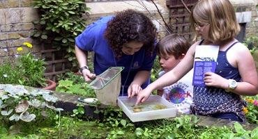Photograph of Children and a member of staff looking for creatures in the Courtyard Garden.