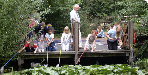 Wildlife Garden activities