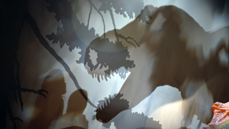 T. rex shadow