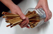 Packing hollow stems into a tube to build a bee hotel