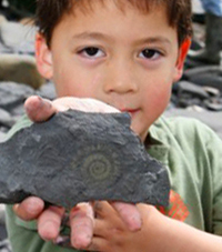 A fossil hunter holds out an ammonite