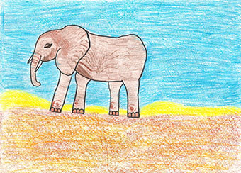 My little elephant by Cristina, age 10