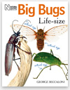 New book, Big Bugs Life-size