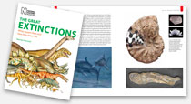 The Great Extinctions book, Norman MacLeod