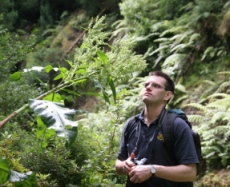 Mark Carine and the Azorean endemic Rumex azoricus. Photo: F. Rumsey