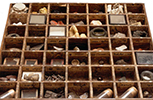 A pharmacopea drawer dating back to before 1753 from the Sir Hans Sloane collection.