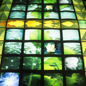 Giant video wall, Ecology gallery.