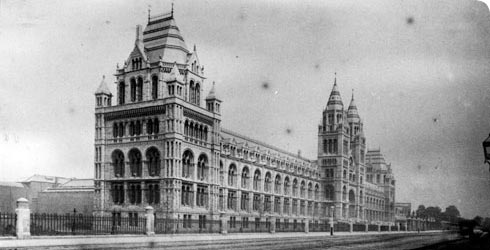The Natural History Museum from Cromwell Road, 1880.