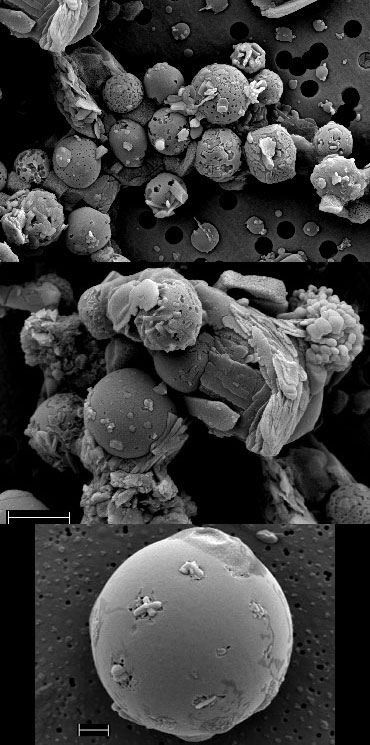 Secondary electron images of volcanic ash from a volcanic plume