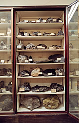 A cabinet of ores from the Collection