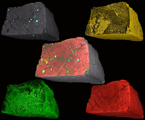 Elucidating the phases in the martian meteorite chassigny