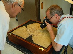 Photographing Archaeopteryx