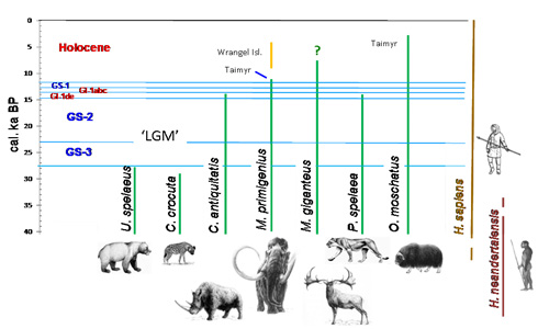 The extinction of large mammals across northern Eurasia