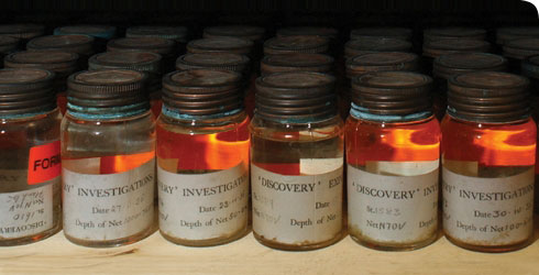 Formalin-preserved specimens from the extensive Antarctic Discovery expedition collections