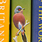 Bird collection books.