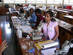 Teaching polychaete biology in South Africa