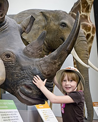 Madeleine May was the 25 millionth visitor to the Museum since free entry began in December 2001.