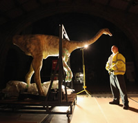 Workmen carefully move animatronic dinosaur Gallimimus into the Museum