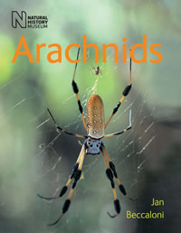 Cover of new book Arachnids
