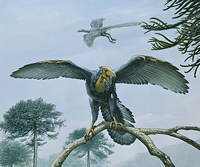 Painting of how Archaeopteryx may have looked