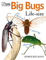 Big Bugs Life-size book