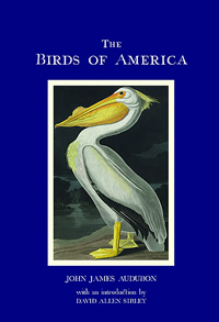 Book cover for The Birds of America eBook