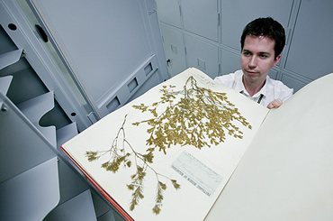The first of 20 million specimens is unpacked into the new Darwin Centre building