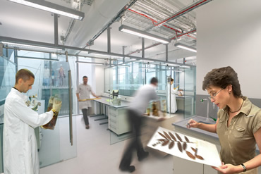 Artist illustration of scientists in the new Darwin Centre laboratories