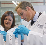 Prince William examines a mosquito in the molecular lab
