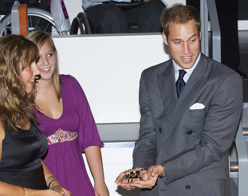 Spider expert Jan Beccaloni hands Prince William Sarah the tarantula