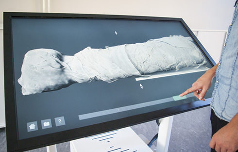 The ancient mummified cat's inner secrets revealed. digital specimen table called Insider Explorer